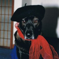 Christa Wojo's dog Roscoe in beret and scarf.