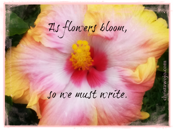 Writing Quotes Christa Wojo